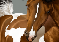 making_of_paint_horse_by_bh_stables-d6sh83r.png